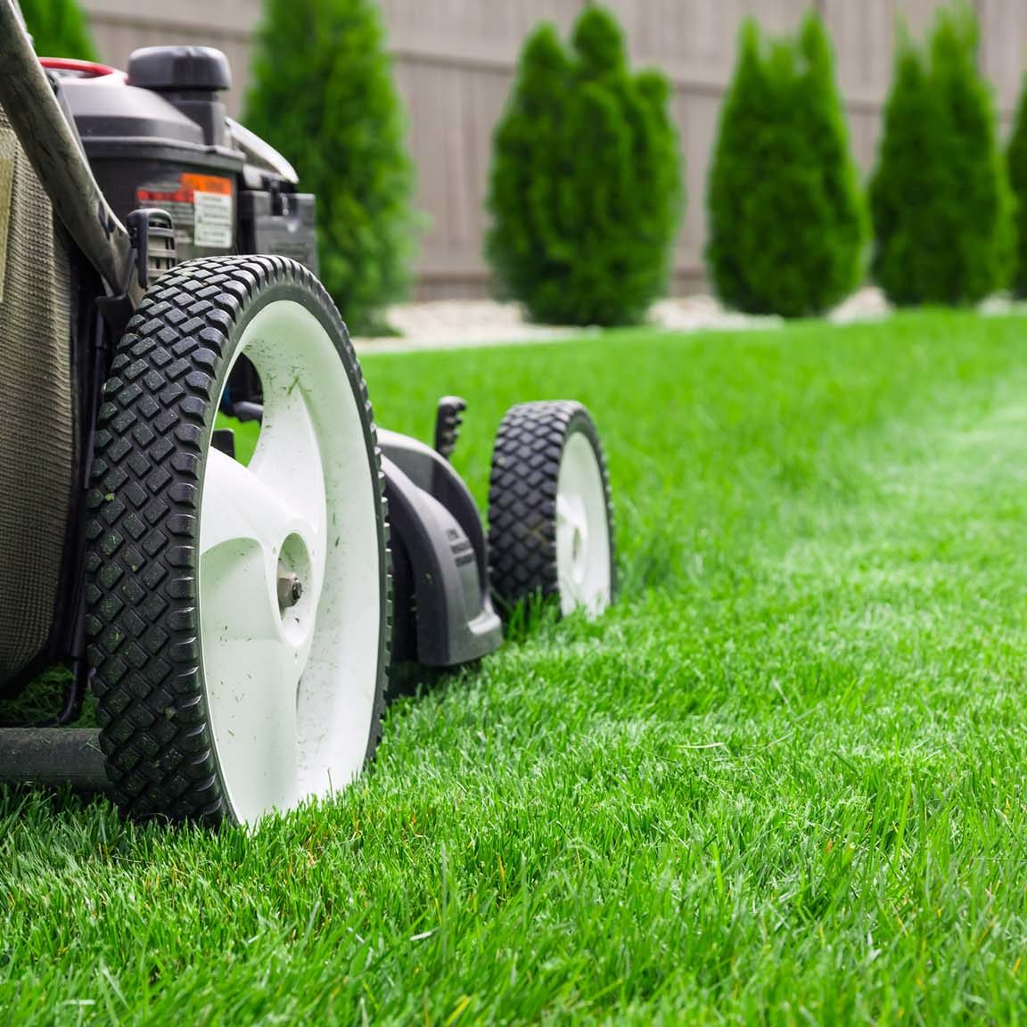 Raleigh, North Carolina Lawn Mowing Service